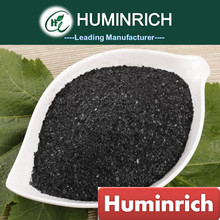 Huminrich Foliar Spray Organic Liquid Humic Concentrate Kelp Extract Best Fertilizer For Vegetables