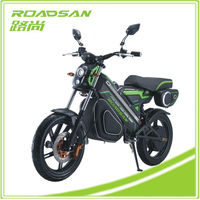 Low Price Fashionable Design Powerful Motor Green Zero Motos Electricas Adult Electric Motorcycle 1200W Electric Motocross Bike