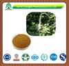 High Quality Black Cohosh Extract Cimicifugoside