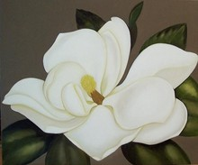 High quality cheap magnolias canvas oil painting
