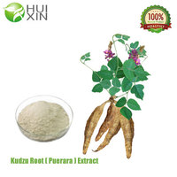 Manufacturer Miroestrol Pueraria Root Extract 30%,40% with lowest price