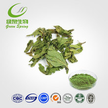 catnip herb, catnip oil ,catnip toys catnip green herb oil