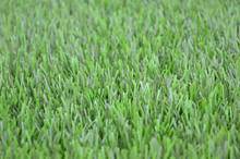 Artificial grass used for team sports, football, baseball