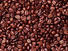 COCOA BEANS (Best Quality)