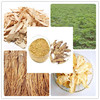 Factory direct supply with competitive price 100% Natural 1% Ligustilide Angelica Root Extract Powder