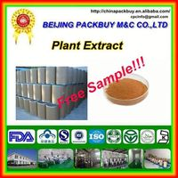 Top Quality From 10 Years experience manufacture chrysanthemum extract