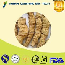 Original Chinese herb Radix moridae officinalls dried root exporter