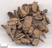 100% Natural Radix morinda officinalis extract