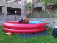 inflatable mechanical bull toys/inflatable mechanical rodeo bull toys
