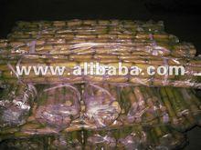 Fresh Sugar Cane