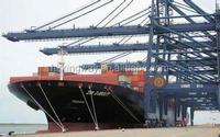 sea freight shipping china to Wellington