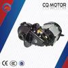 Cambodia/Thailand DC brushless (BLDC) TUK TUK passenger tricycle motor