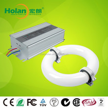 factory Hot Induction Lamp Electronic Ballast for new products on china market