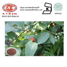 Rubus idaeus L . Extract Powder / Rubus idaeus Powder Raspberry Ketone Extract / Fructus Rubi P.E.