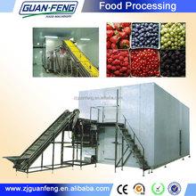 individual quick freezing equipment/iqf frozen machine for food/iqf equipment