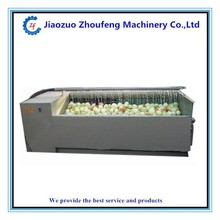 BRUSH Cleaning machine for carrot potato onion walnut washing machine(0086-15939138973)