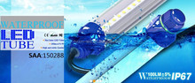2015 led tube T12 for Chicken farm new electrical invention gree/blue color for Coop