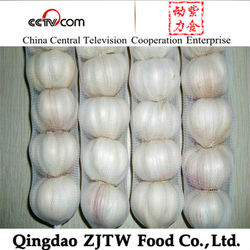 Chinese garlic fresh products exported to dubai markets