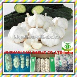 Pure white fresh garlic from 2014 crop