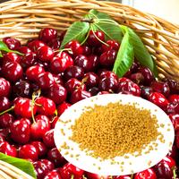 high quality name organic fertilizer ammonium sulfate for mango
