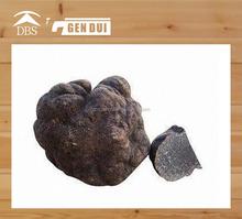 2014 crop Chinese Black Truffle