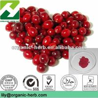 Cranberry Extract 20% Anthocyanidins (GMP.ISO)