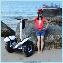 Electric scooter china prices/evo scooter 1000W/CE approved japanese monopattino elettrico