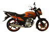 Motorcycles manufacture bike morocco 250 cc motorcycle ZF150-10A(III)