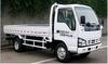Qingling 4*2 Cargo Truck