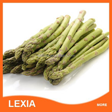 wholesale high quality frozen green asparagus