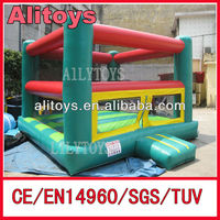 Customized style inflatable bouncer adult rental