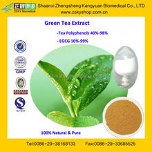 GMP Certified Manufacturer Supply 100% Natural Green Tea Extract