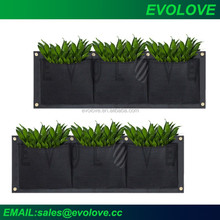 Fioriera modulare, verde parete fioriera modulare