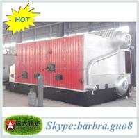 quick heating coal biomass wood burning swimming pools water heating boilers