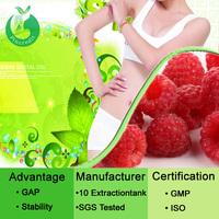 Plant extract Raspberry extract powder/raspberry plant
