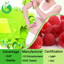 Plant extract Raspberry extract powder/raspberry plant