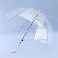 Factory Direct Transparent Umbrella, Custom Printed Straight Rod Umbrella Wholesale