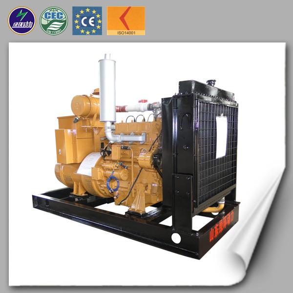 Small Natural Gas Turbine Generator
