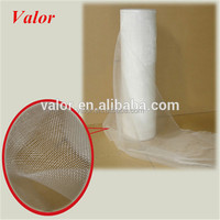 PE screen printing mesh/Plastic Screen Mesh/Mesh Fabric Filters with ISO approved