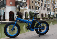 fold snow electric bike beijing