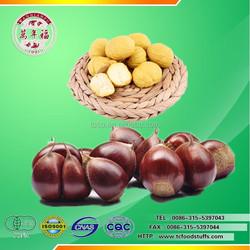 chinese organic fruits---organic fresh chestnut