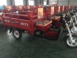 motorized kit car / rickshaws from China