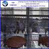 Alibaba China Mink Cage Trap Squirrel Trap Cage (Best quality)