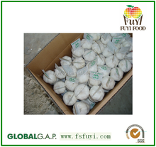 High Quality and Cheap Price Normal Fresh White Garlic on sale