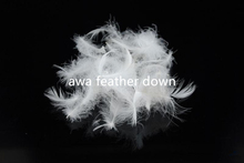 WHOLESALE || WASHED WHITE DUCK FEATHER