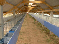 2015 new style Layers Poultry Chicken Cage