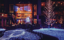 good price and high quality manufacturer with CE&RoHS certificated led decorative lights fiber optic light curtain