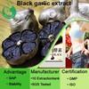 Aged garlic extract black garlic powder allicin powder