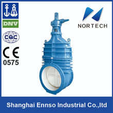 High Quality DN50-DN1600 din rising stem gate valve