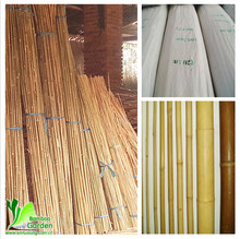 bamboo poles and things
